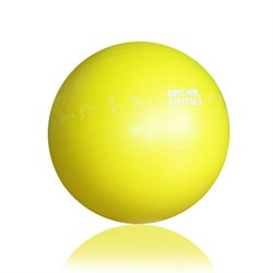 Гимнастический мяч 65 см Original Fit.Tools FT-GBPRO-65 - фото 18145